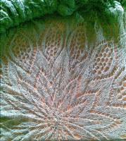 greencloth-11.jpg
