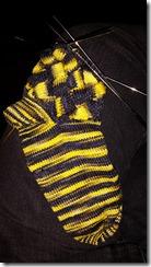 bee-sox-1
